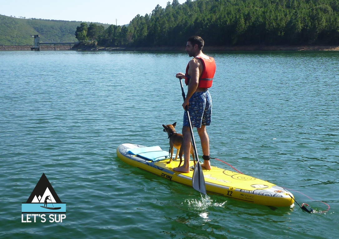 let's sup - dog friendly stand up paddle