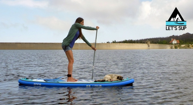 let's SUP dog friendly stand up paddle